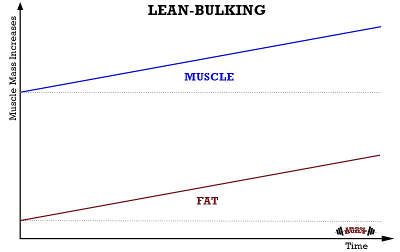 LEAN-BULKING-graph