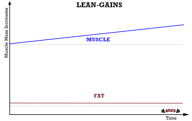 LEAN-GAINS-METHOD