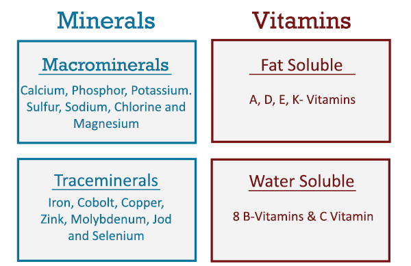 micronutrients minerals and vitamins