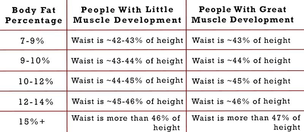 waist to height ratio body fat
